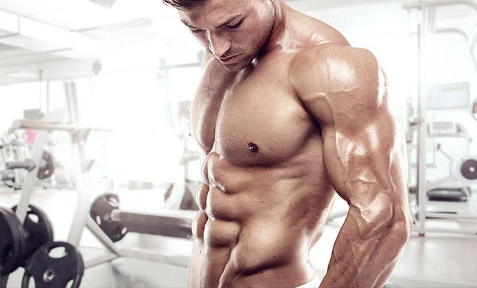 Essential basics for bodybuilding